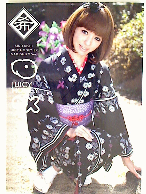 Aino Kishi 2012 Juicy Honey EX Nadeshiko Card #10